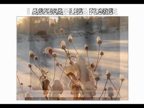 Poema de l'Hivern amb música de Dàmaris Gelabert