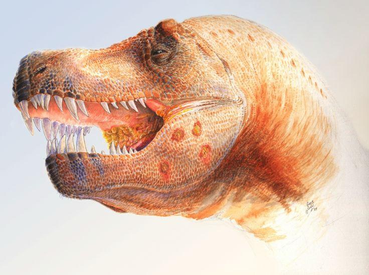 Tyrannosaurus rex è un nome noto anche a chi i dinosauri non li conosce proprio, ed è uno dei pochissimi nomi scientifici che i non addetti ai lavori conoscono per intero (genere e specie).