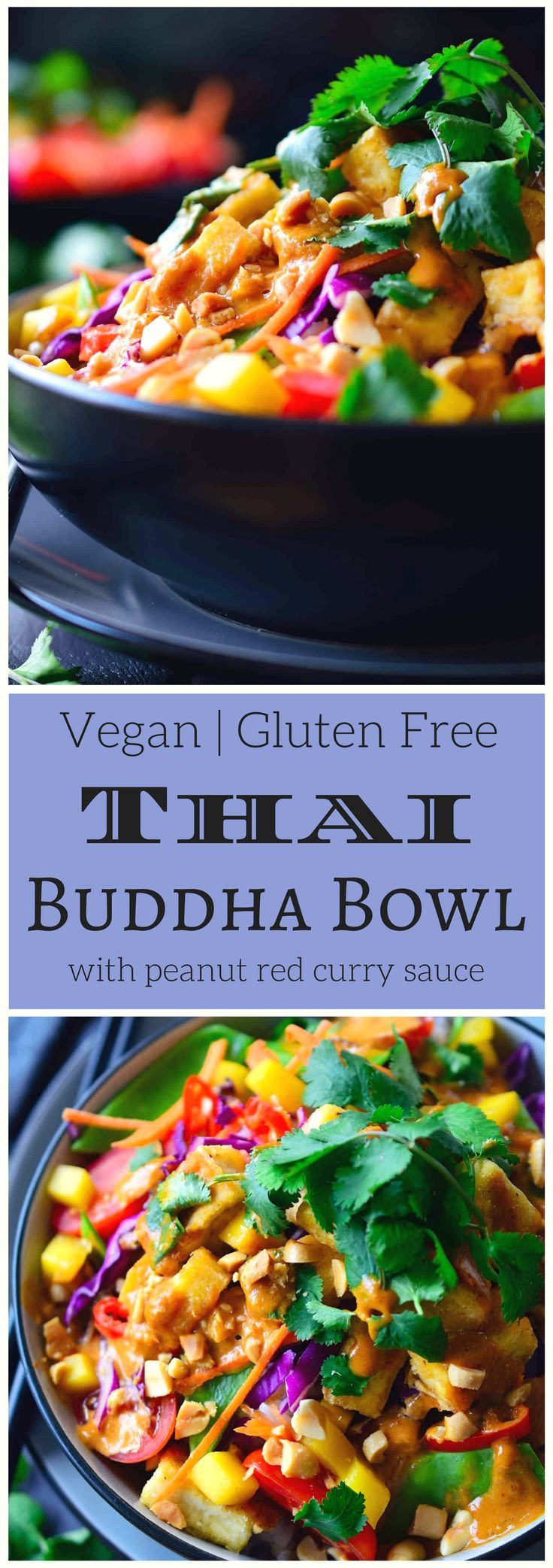 This Thai Buddha bowl is quick and easy to put together with heaps of fresh vegetables and crispy fried tofu served over coconut rice and topped off with a simple Thai peanut sauce with spicy red curr