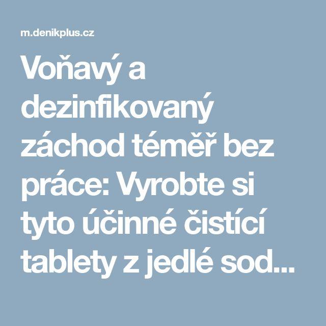 Voňavý a dezinfikovaný záchod téměř bez práce: Vyrobte si tyto účinné čistící tablety z jedlé sody • Hobby / deníkPlus.cz