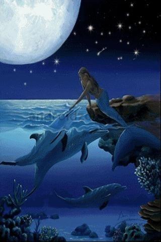 Google Image Result for http://cdn1.staztic.com/screenshots/mermaids-dolphins-live-wallpa-14-1.jpg