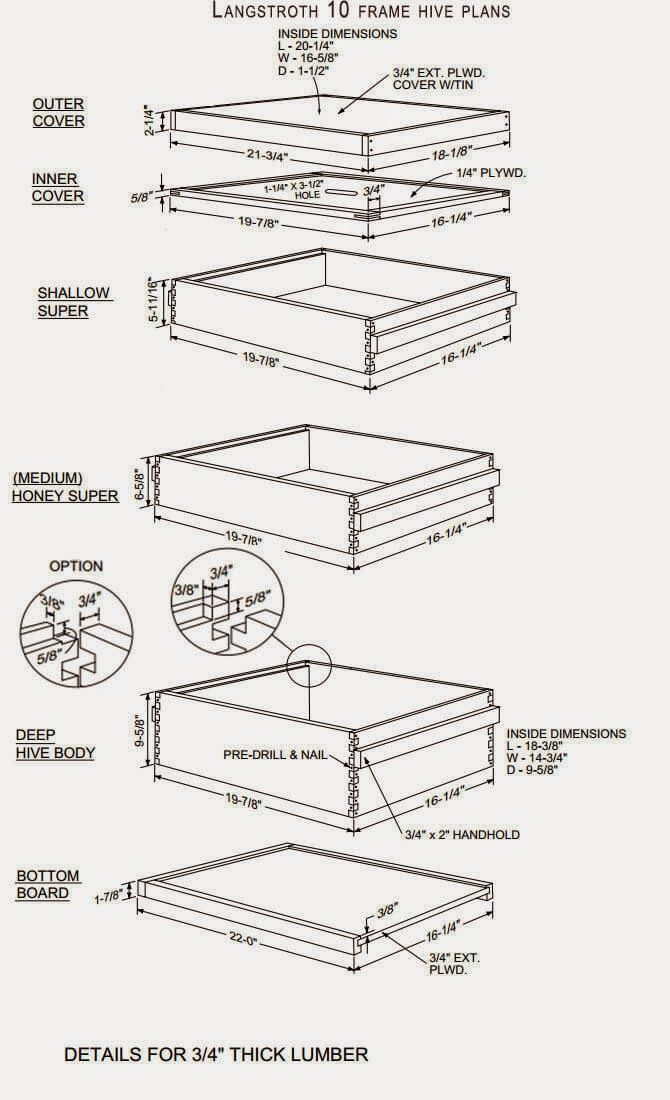 Best 25 bee hive plans ideas on pinterest langstroth for Beehive plans blueprints
