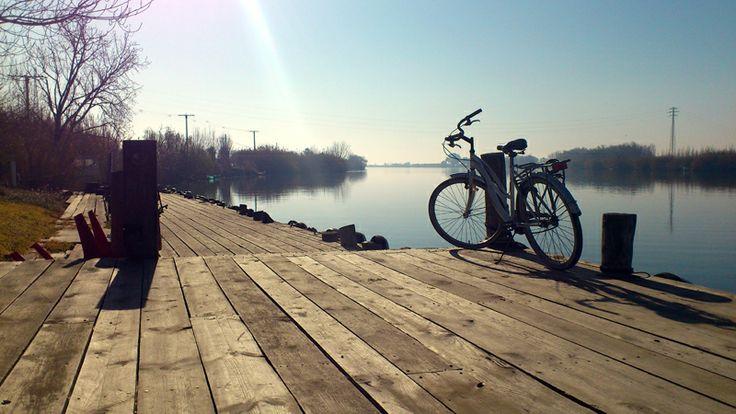 Rutes en bicleta pel Delta de l'Ebre