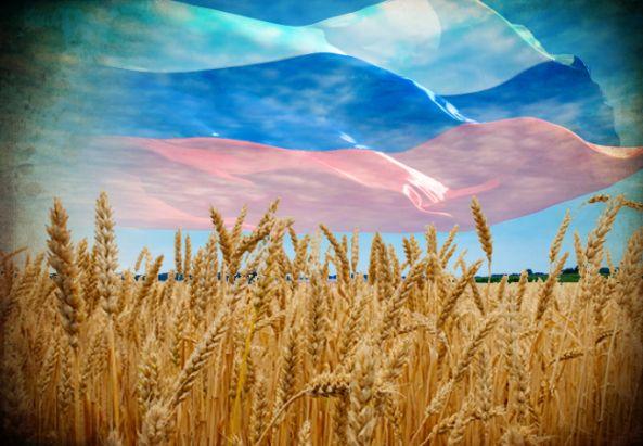 CNA: La REVOLUCIÓN AGRÍCOLA de RUSIA (Sin Transgénicos) dá una BOFETADA a EEUU y puede SALVAR al MUNDO