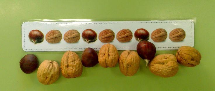 """* RACÓ DE LLENGUA: """"Fruits secs i carnosos"""". Como estamos trabajando los frutos y frutas de otoño, aprovechamos los rincones para trabajar ..."""