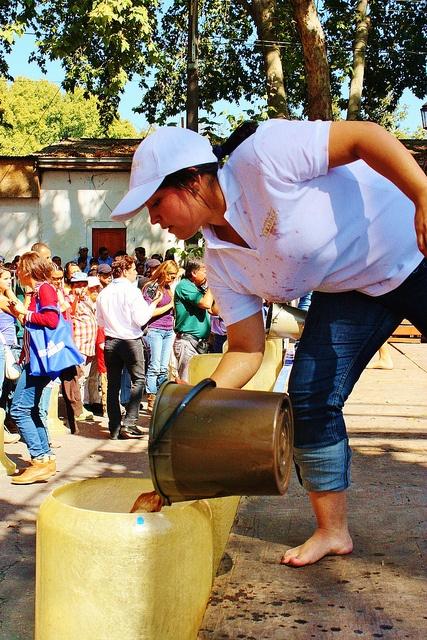 Pisada de Uvas de Mujeres. Fiesta de la Vendimia de Isla de Maipo 2013 (Chile) by j_santander74, via Flickr