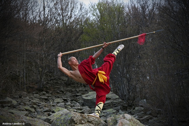 chinese martial arts essays All essays should be submitted in hard copy yong and the modern chinese martial arts novel martial arts of ea.