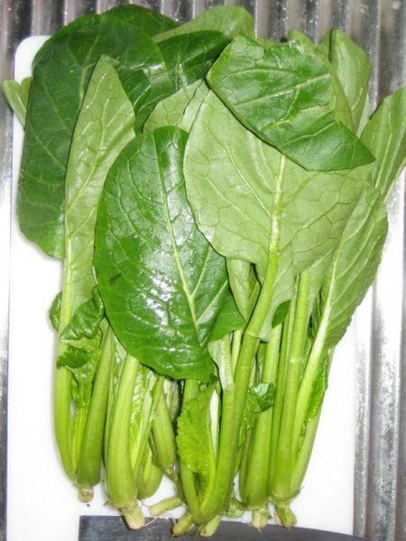 小松菜 葉酸 鉄分   食べ物
