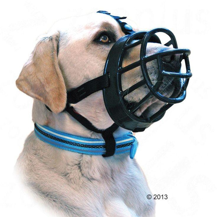 Animalerie  Muselière Baskerville Ultra pour chien  taille 1 : jack russel terrier bichon maltais