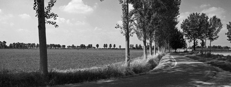 Pianalto, Romanengo (Cr). Foto di Carlo Bruschieri.