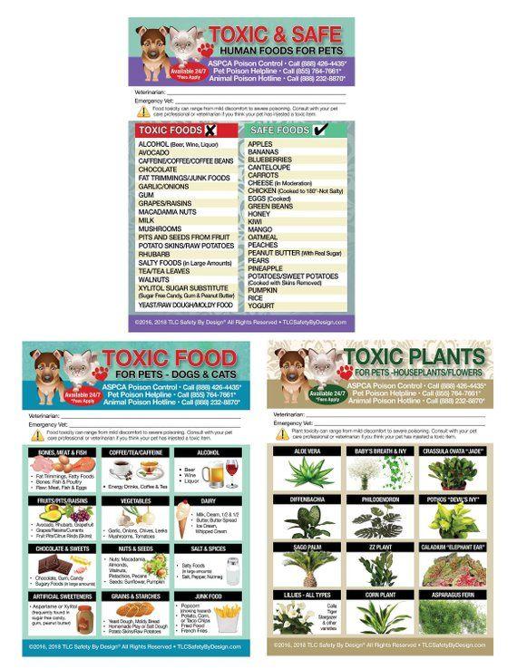 Set 3 Enhanced 5 X 7 Toxic Safe Foods Toxic Plants Toxic