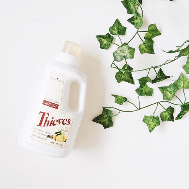 The thieves laundry soap is 🙌🏻😍🙌🏻😍. 64 loads of perfect pumpkin-spice, toxin-free, 100% safe for your body, Christmas-smellin' laundry. YES PLEASE! 🙋🏻 Young Living is sending a bottle of this amazing goodness to everyone who purchases a premium starter kit this month (and we are sending everyone who joins the #sparkandseedtribe as a wholesale member some super fun goodies to make the deal even sweeter! ✨). So basically it's such a wonderful time to grab your kit! 🎉 Now, I'm off to…