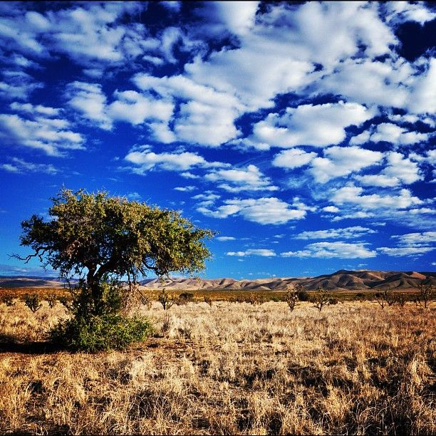 New Mexico has the bluest sky and most amazing cloud formations.
