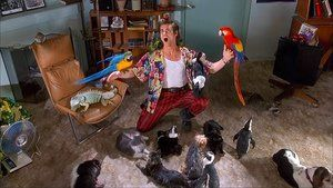 Ace Ventura: Pet Detective - world of movies