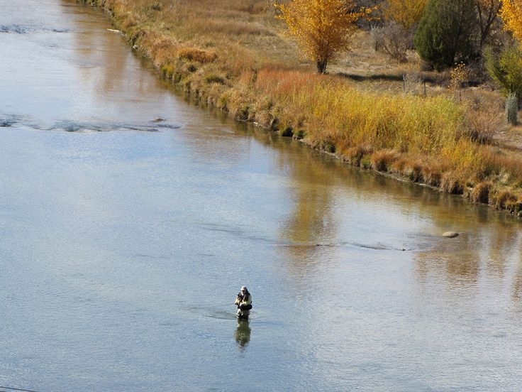 7 best fly fishing quality waters of san juan river for San juan fly fishing