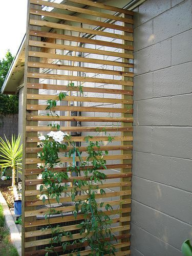 For vining vegetables, an easy trellis to make -- this one screens an air-conditioning unit