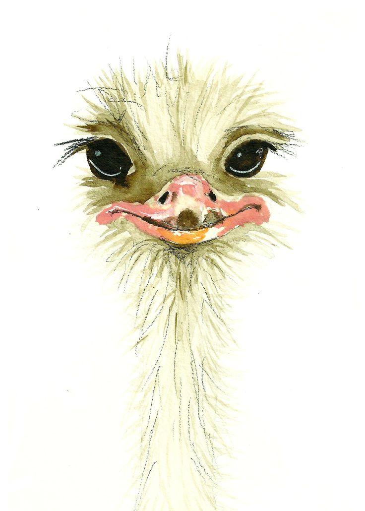 подобные картинка страуса мультяшного пошагово многих