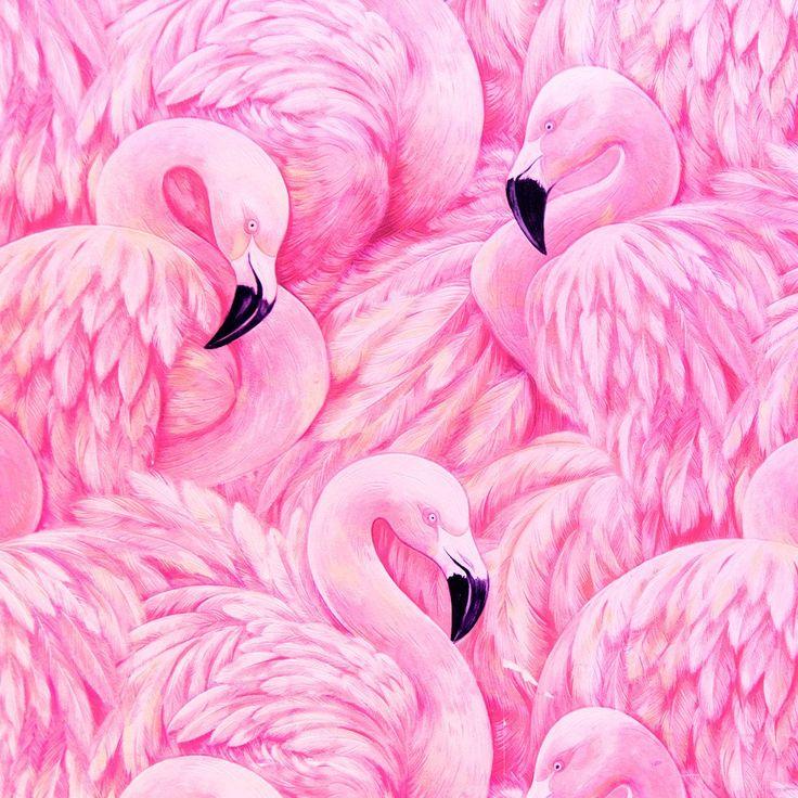 пьянящий красивые рисунки розовые нужно