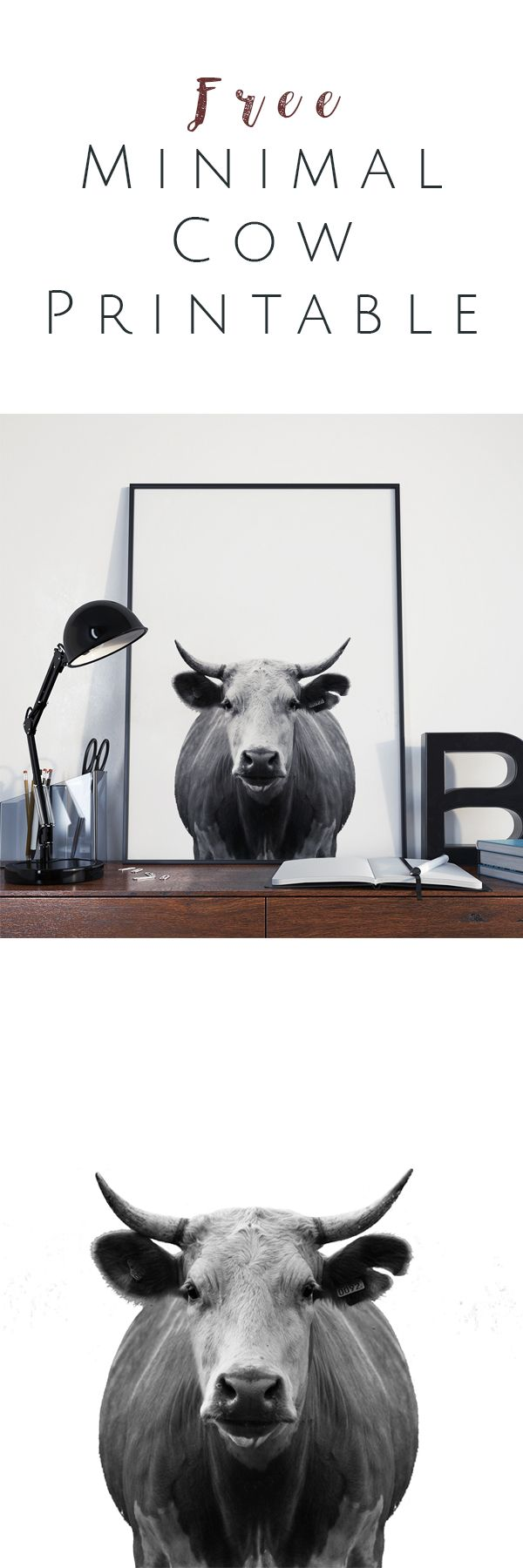 FREE Minimal Cow Printable. Southern charm with a modern twist.  Black and white cow perfect for wall art.  OkieHome freebies and blog.