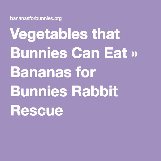 Vegetables that Bunnies Can Eat » Bananas for Bunnies Rabbit Rescue