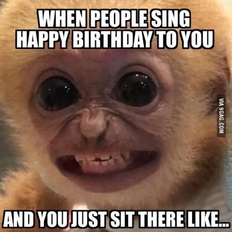 funny memes happy birthday face