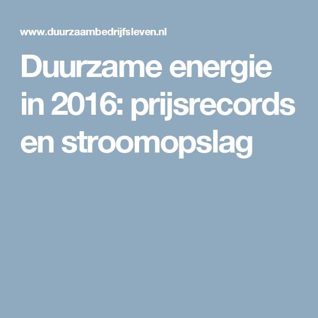 Duurzame energie in 2016: prijsrecords en stroomopslag