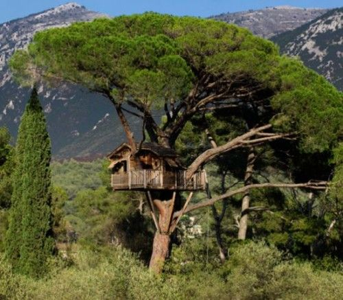 7 Amazing Houses Built Into Nature: 17 Best Ideas About Amazing Tree House On Pinterest