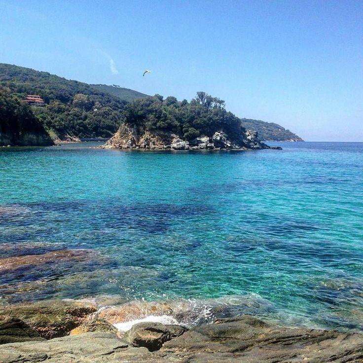 Buongiorno dalla spiaggia della #paolina all'#elba dedicata alla sorella di #napoleone  bellissimo scatto di @veronicabrandi. Continuate a taggare le vostre foto con #isoladelbaapp il tag delle vostre vacanze all'#isoladelba. Visita http://ift.tt/1NHxzN3