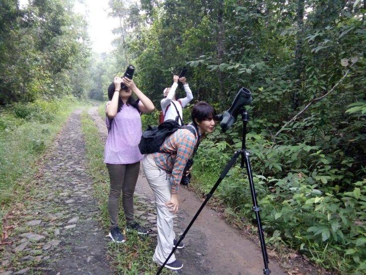 Satwa Elephant Eco Lodge (Bandar Lampung, Indonesia) - Review Guest house - TripAdvisor