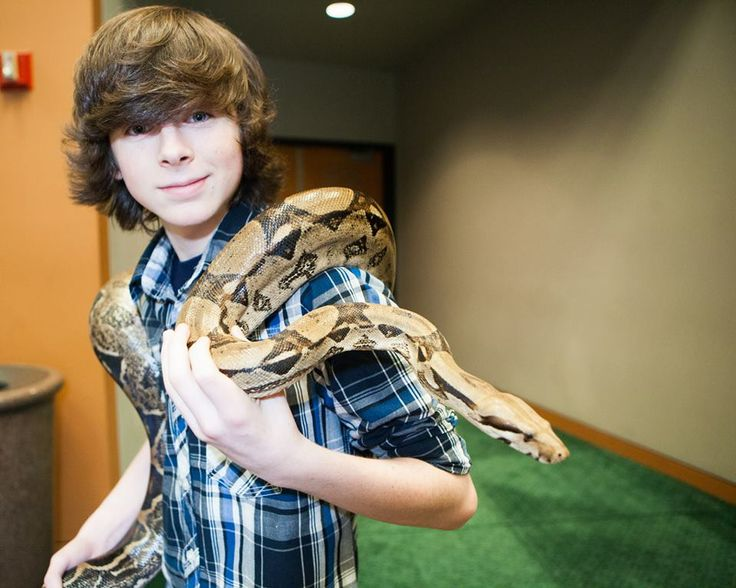Chandler Riggs holds a snake at 2014 Salt Lake Comic Con FanXperience