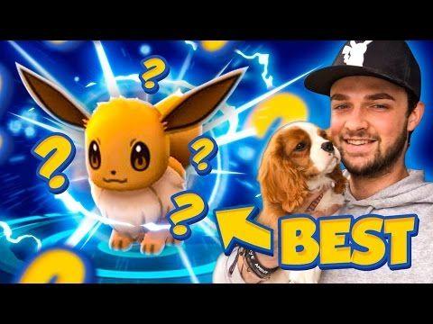 Pokemon GO - BEST EVER EEVEE EVOLUTION! (OMG!) - https://www.pokemongorilla.com/pokemon-go-best-ever-eevee-evolution-omg/