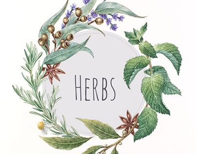 """Check out new work on my @Behance portfolio: """"Herbs"""" http://be.net/gallery/40298479/Herbs"""