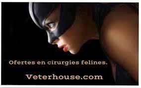 Resultado de imagen de veterhouse