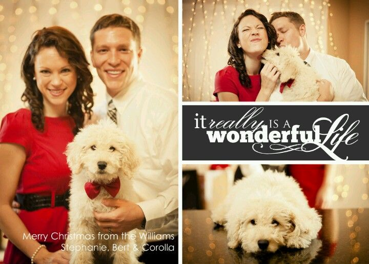 DIY Holiday Card with our puppy on Etsy! You send them photos and the layout you want, they design, you approve, you print at Costco. See Cardetcetera's store. Also DIY photo backdrop. White sheet, argyle pattern lights, chalkboard, presents and a poinsetta.