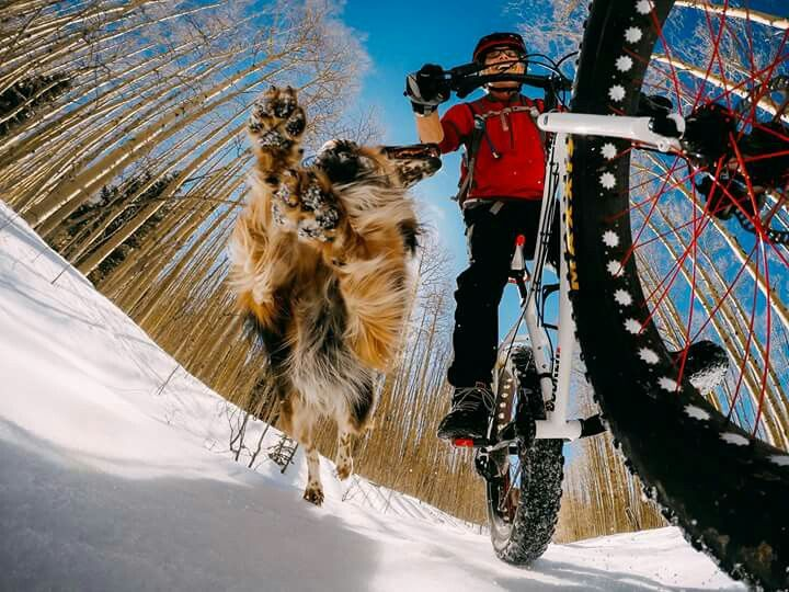 Photo of the Day! Huge congrats to GoPro Awards recipient Bob Ward + his pup Tula for sharing their favorite activity -- riding in the snow of Colorado! Share your passions for a chance at cash rewards: gopro.com/awards #gopro