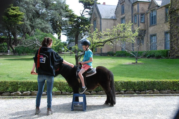 Pony Ride with castle background