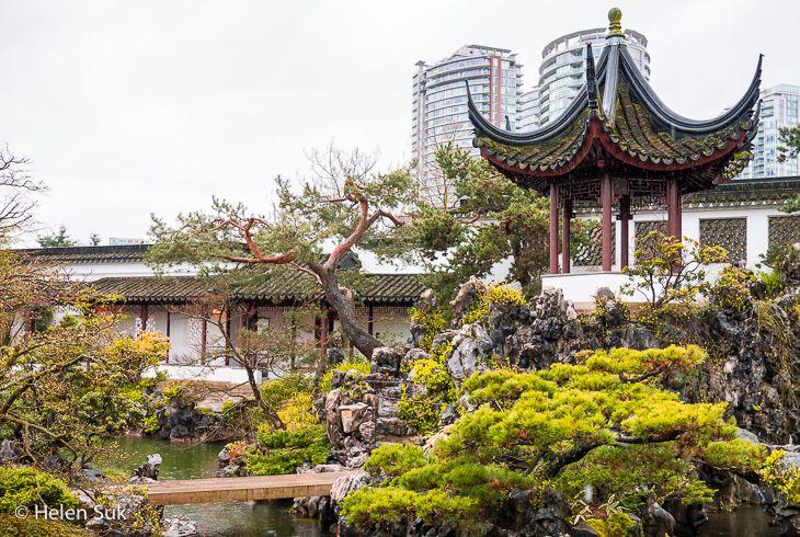 asian garden at dr sun yat-sen classical chinese garden in vancouver