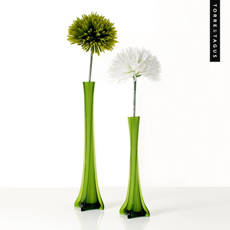 Create a refreshing and eye-catching display with these beautiful Lido Square Twist Glass Vases. Simply decorate with your favorite flower to instantly boost your mood! #TorreAndTagus #GlassVases #ColourYourHome #HomeDecor www.torretagus.com