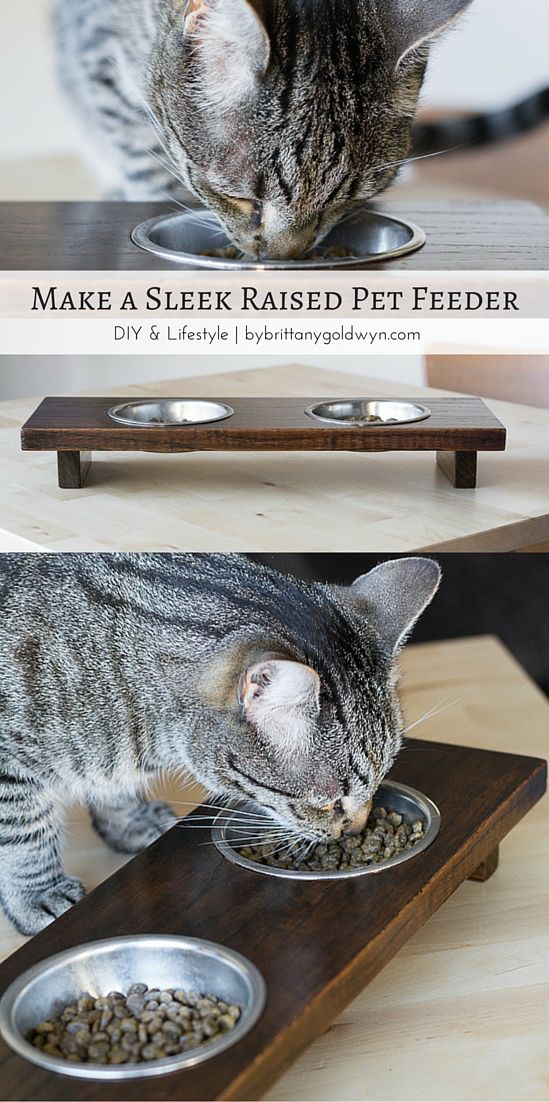 Check out this sleek raised pet feeder made using only scrap wood. Must add this to the project list!