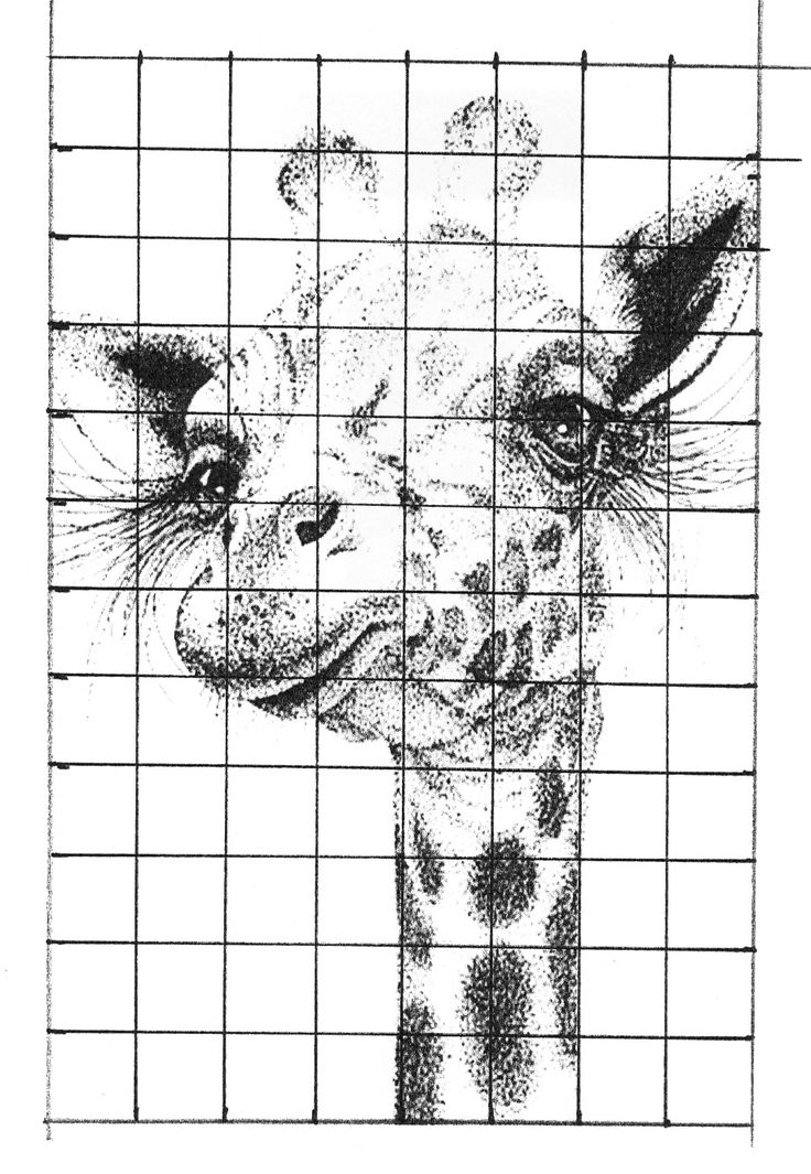 Grid Drawing Worksheets For High School Students : Stippling grid art projects drawing pinterest