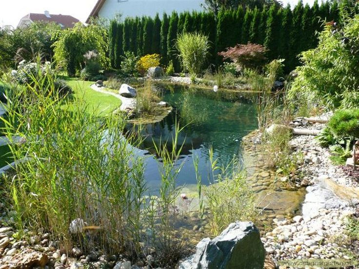 designergarten-at_schwimmteiche_125.jpg (800×600)
