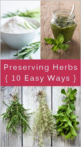 10 easy ways to preserve herbs.