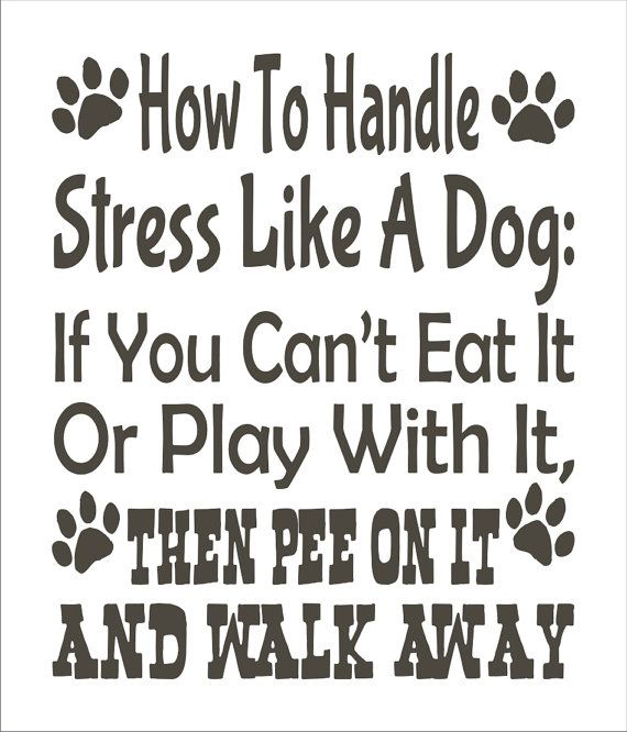 How To Handle Stress Like a DOG- **STENCIL** 6 sizes available-  Create Dog Signs and Pillows