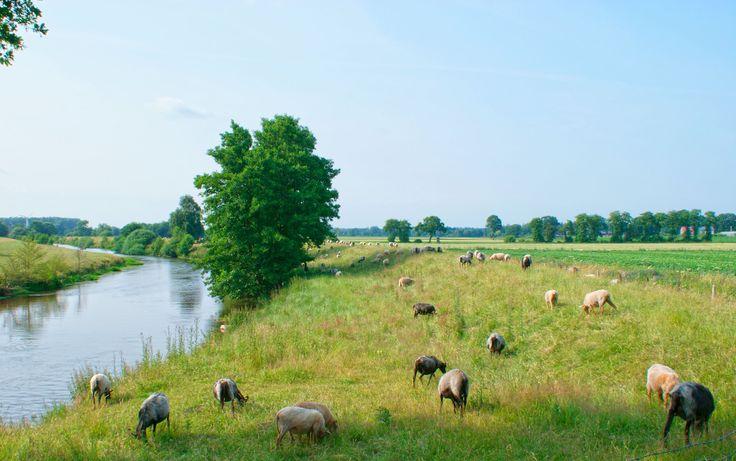 Wilde Geest auf die sanfte Tour - http://www.reisecompass.de/wilde-geest-auf-die-sanfte-tour/