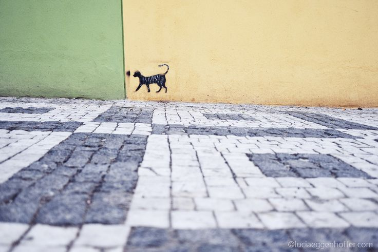Hello City | Prague | Czech Republic | ©luciaeggenhoffer.com |   #streetphotography   #streetphoto   #streetphotographers   #colour   #colorstreetphotography   #urban   #city   #cat   #blackcat   #animal   #graffiti | STREET photography with SOUL – Sbírky – Google+