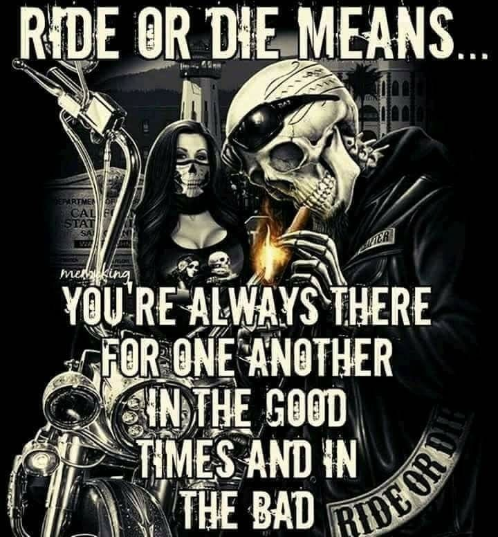 Pin By Donnie Willis On Mine With Images Rider Quotes Biker