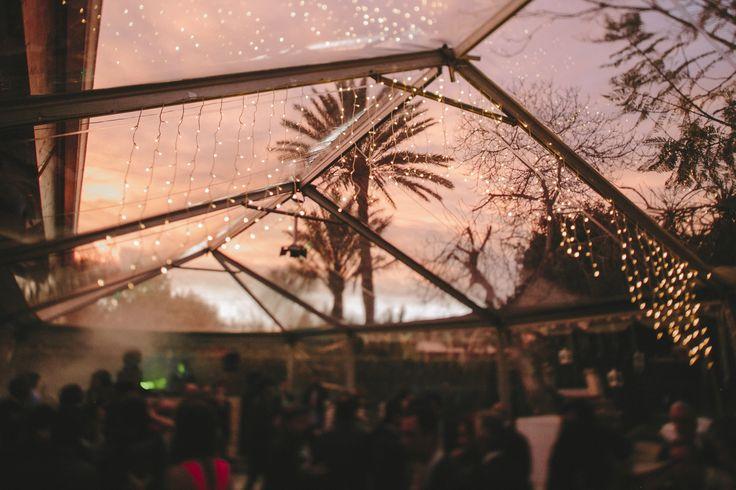 carpa de boda - villa delia - atardecer - palmera - luz - vestido de novia - wedding dress - novia - boda - boda en sevilla - vestido - couple - kiss