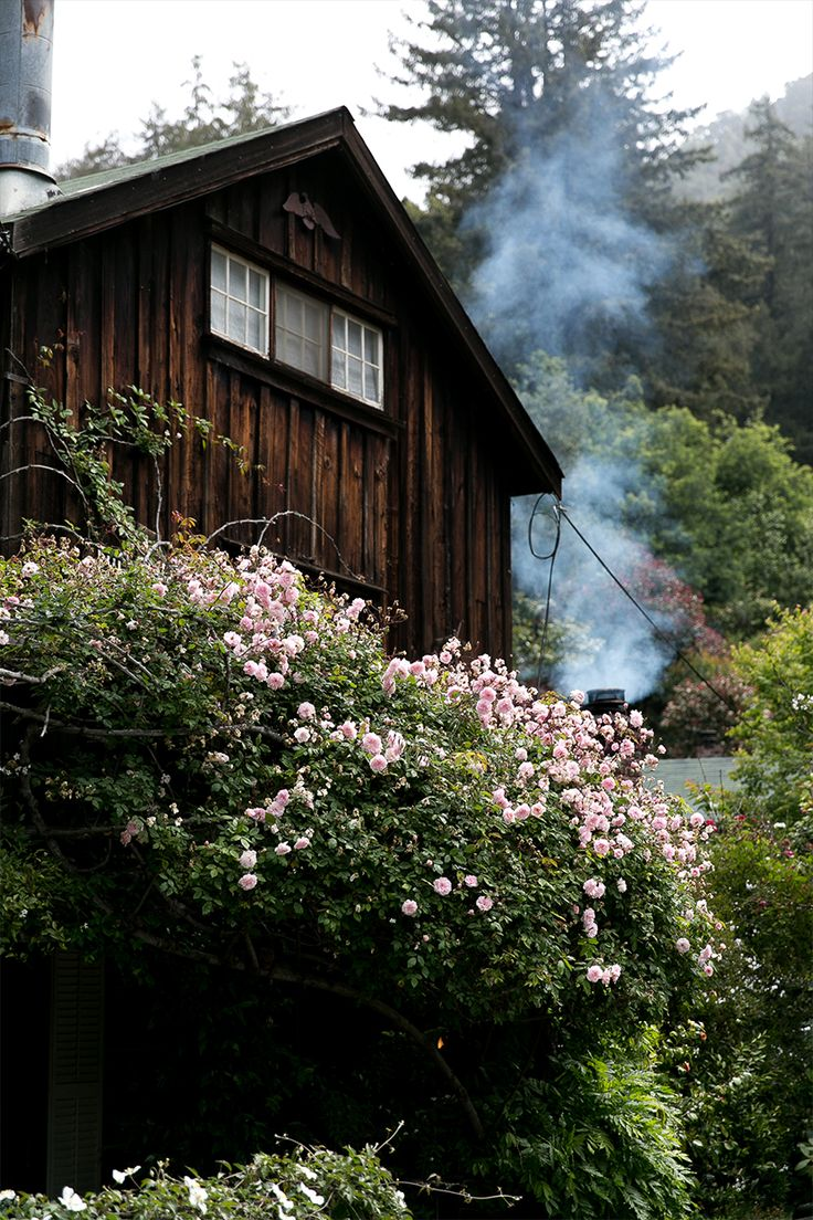 Big sur part 2 the fresh exchange cabins pinterest for Big sur cabin