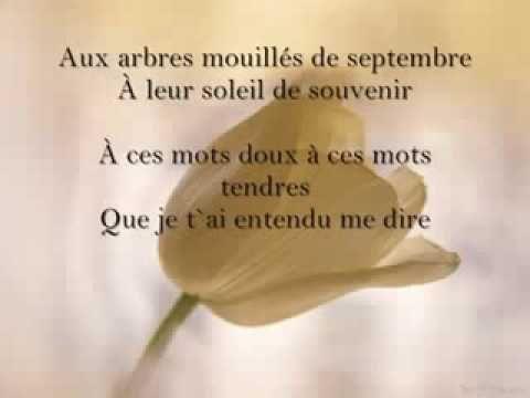Garou   L'adieu lyrics