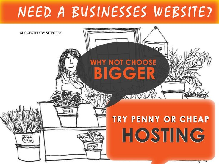 In this competitive world, businesses do need to have fascinating website which would be containing information about business models, plans, stores and customer reviews. Would cheap hosting or penny hosting sufficient for retention of customers? We give importance to our old customers as they have given us the business and are responsible for our survival uptil. Why not to choose some bigger hosting, as Penny hosting or cheap hosting could be there, as they do have performance issues.
